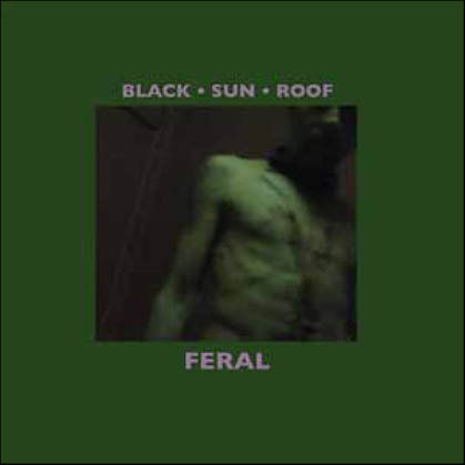 Black,Sun,Roof,‎–,Feral,LP+CD,Black Sun Roof, Feral, VHF, vinyl