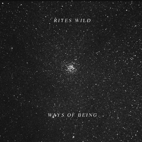 Rites,Wild,‎–,Ways,Of,Being,LP,Rites Wild, Ways Of Being, Not Not Fun, Vinyl, vinilo, comprar, twosteprecords, two step records, Two-Step Records