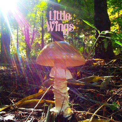 Little,Wings,‎–,Last,2xLP,Little Wings, Last, Rad, vinyl, LP
