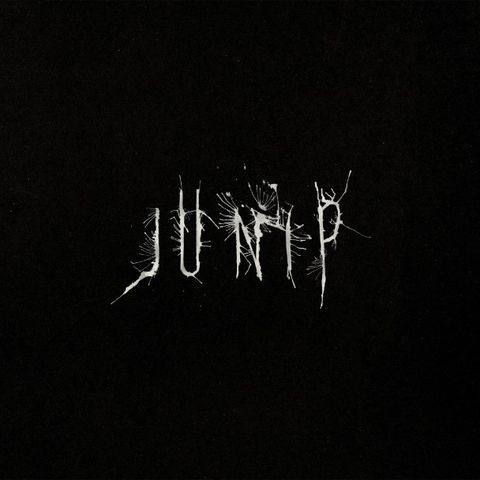 Junip,‎–,LP,(RSD,2013), Junip, City Slang, LP, vinyl