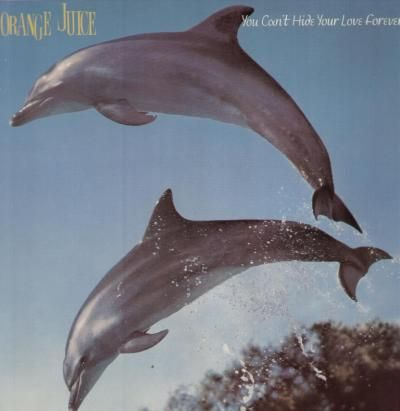 Orange,Juice,‎–,You,Can't,Hide,Your,Love,Forever,LP,(RSD,2013),Orange Juice, You Can't Hide Your Love Forever, vinilo, Domino, LP