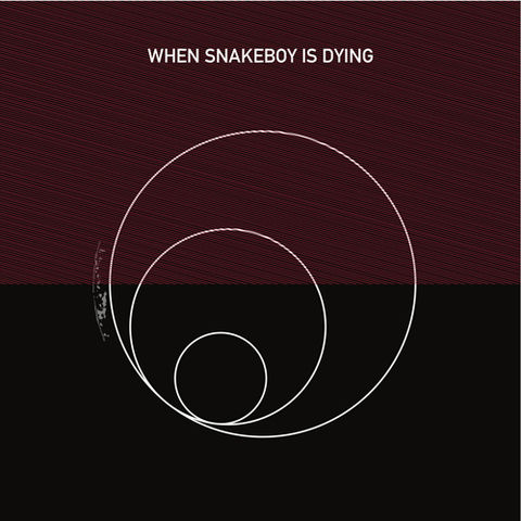 Robert,Piotrowicz,‎–,When,Snakeboy,Is,Dying,LP,Robert Piotrowicz, When Snakeboy Is Dying, Musica Genera, LP, vinyl