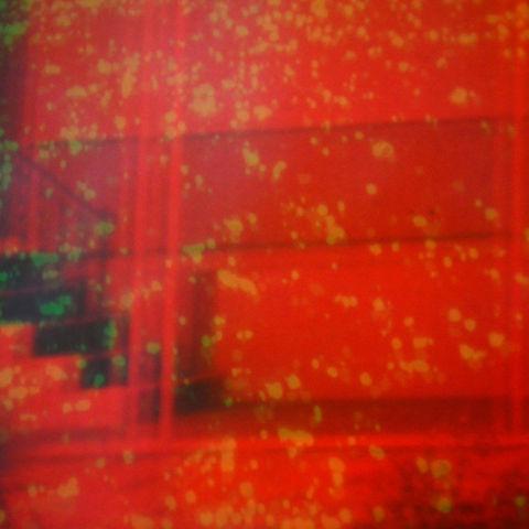 Nicholas,Bullen,–,Component,Fixations,LP,Nicholas Bullen, Component Fixations, Type, LP, vinyl