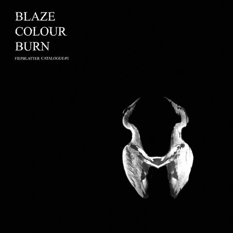 Jan,St.,Werner,‎–,Blaze,Colour,Burn,LP,Jan St. Werner, Blaze Colour Burn, Vinyl, Thrill Jockey, LP, vinilo, comprar, twosteprecords, two step records, Two-Step Records
