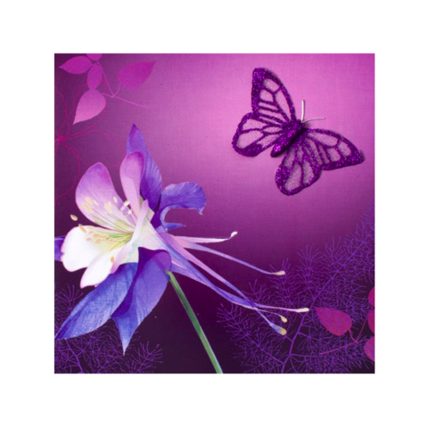 Flowers,with,Glitter,Butterfly,Mother's,Day,Card,papyrus, handmade, greeting, card, mother's, day, mother, mom, mum, flowers, floral, flower, glitter, butterfly, spring, elegant, tip-ons, fabric, purple, international, hong kong