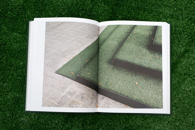 Suddenly The Grass Became Greener (Special Edition) - product image