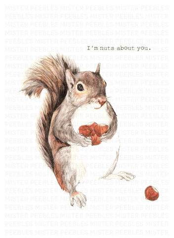 Im,Nuts,About,You,Greetings,Card,by,Mr,Peebles,Im Nuts About You Greetings Card by Mr Peebles