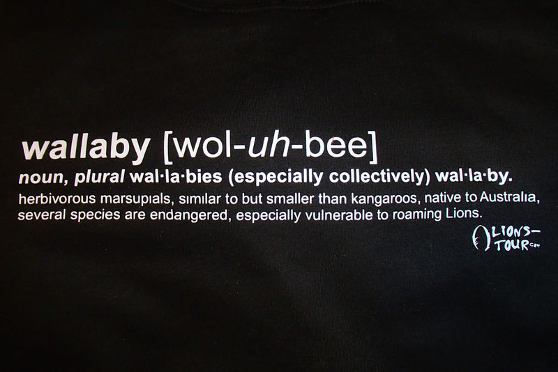 2013 Wallaby Definition Hoodie - Black - product images  of 