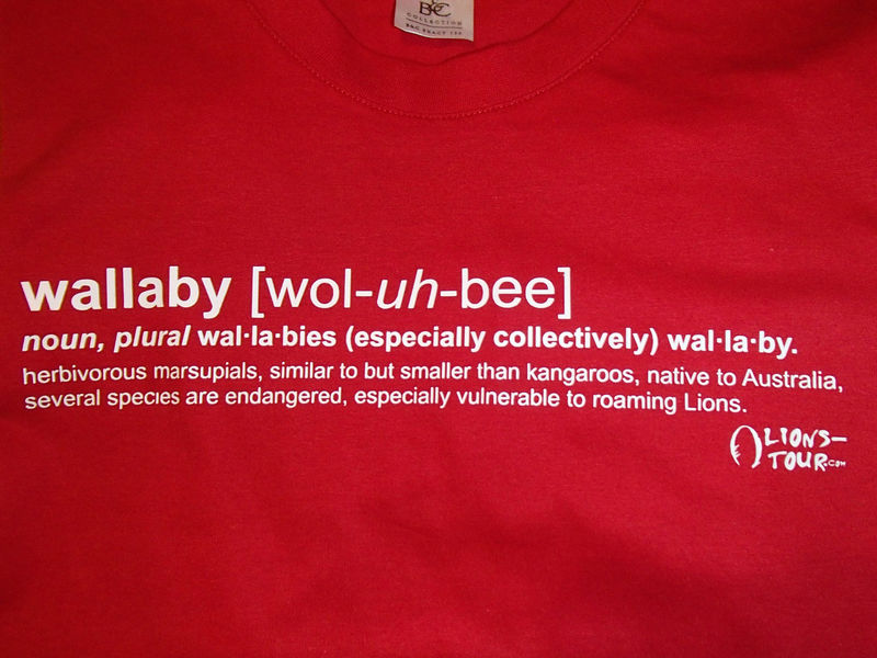 2013 Wallaby Definition Tee - Red - product images  of 