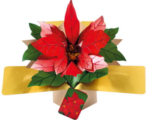 Second,Nature,Xmas,Pop,Ups,-,Poinsettia,Second Nature Pop Ups, Original Pop-ups, Pop up greeting card, Pop up, Pop-up, Pop-ups, Christmas Pop Up, Xmas Pop Up, Poinsettia