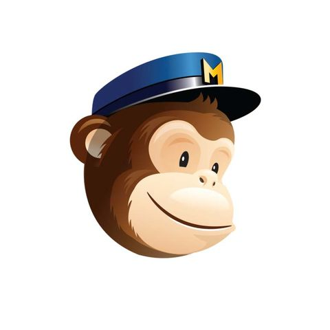 MailChimp,Pop,Up,Integration, newsletter integration, email pop up, web design