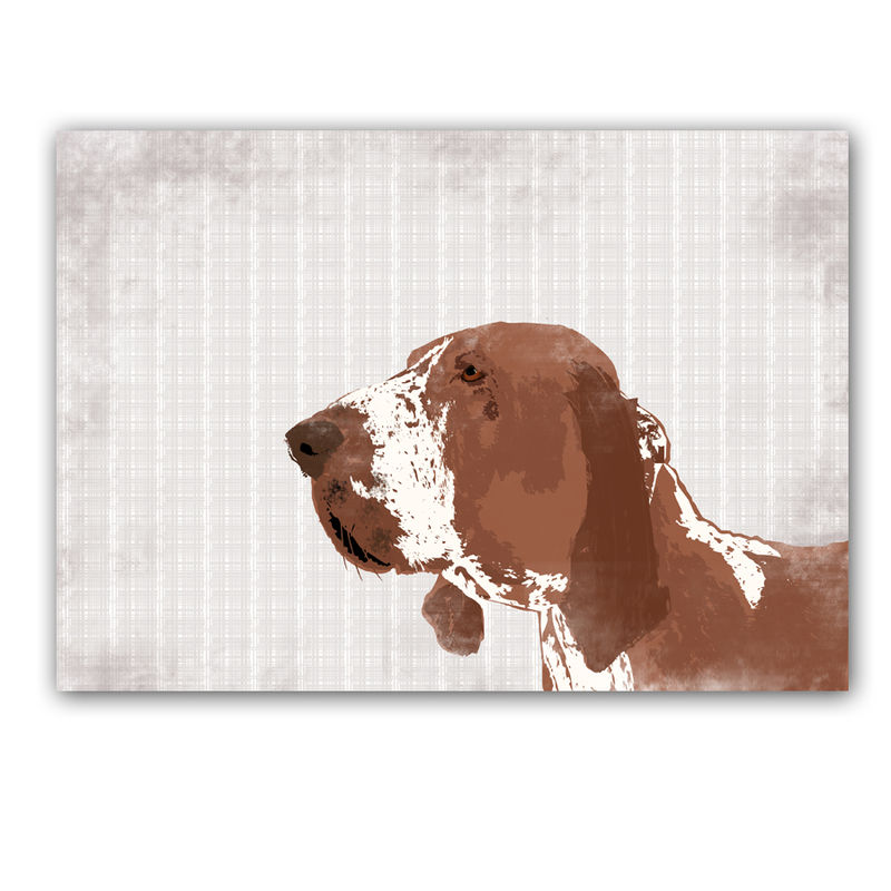 Bracco Italiano Puppies Bracco Italiano Dog Art Fine