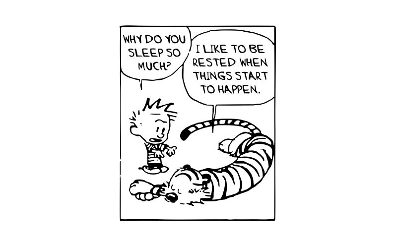 CALVIN and HOBBES | WHY DO YOU SLEEP SO MUCH? - product images  of