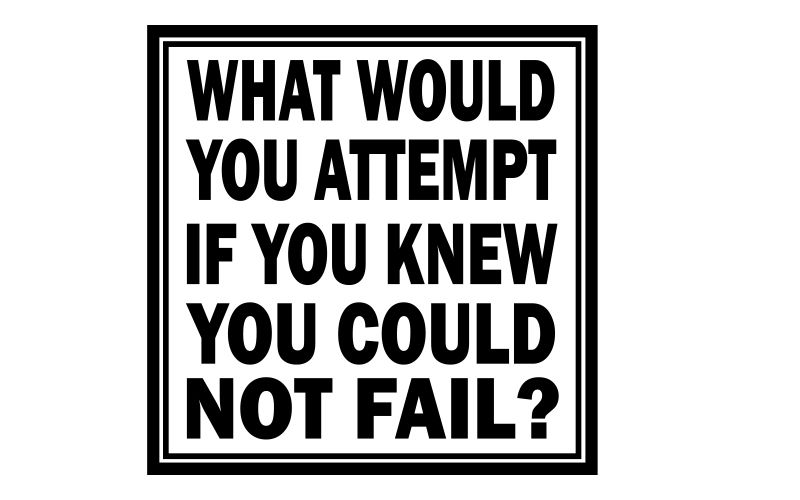 WHAT WOULD YOU ATTEMPT IF YOU KNEW YOU COULD NOT FAIL? - product images  of