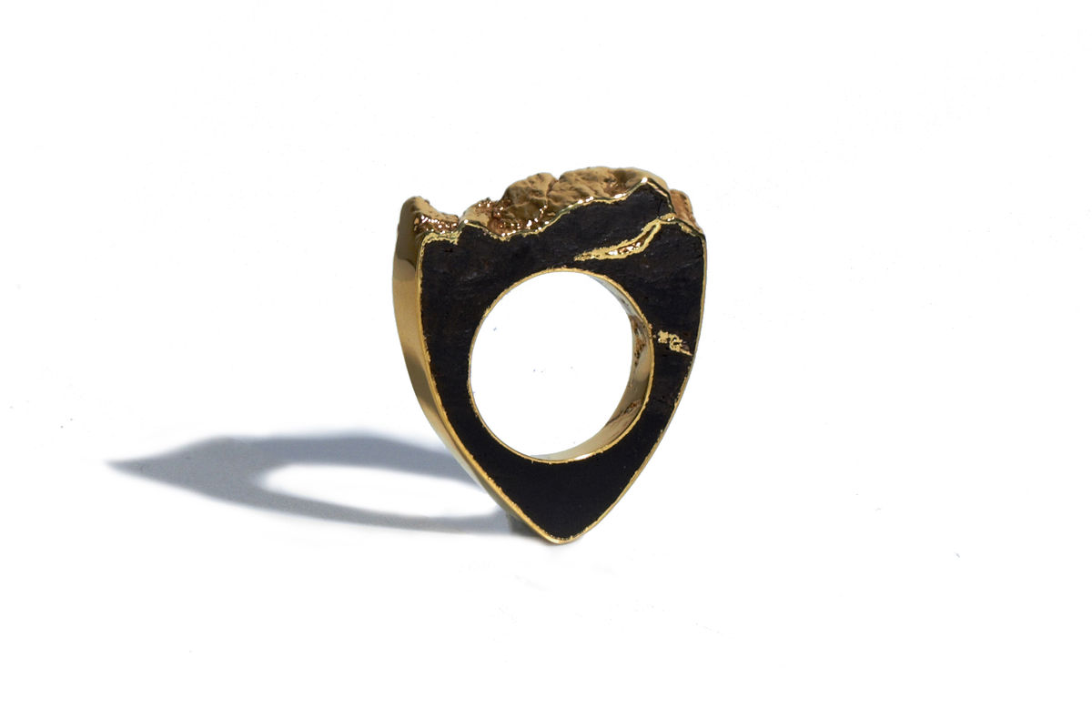 Bog oak and 22ct yellow gold ring - to order only - product image