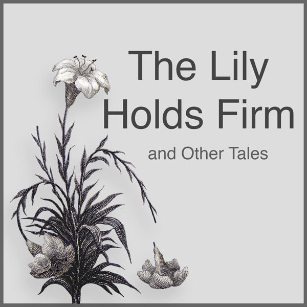The Lily Holds Firm