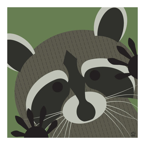 Rascal,Raccoon,10x10,Giclee,Print,nature,Design,spring,science,raccoon