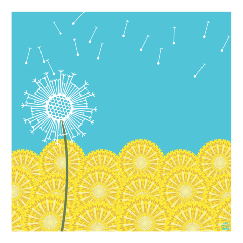 Dandelion,Gone,to,Seed,10x10,Giclee,Print,nature,Design,spring,science,dandelions,seeds,wind,flow