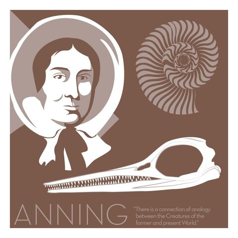 Mary,Anning,-,Eureka,Giclee,print,giclee, print, science, mary leakey, evolution, fossil, vector art