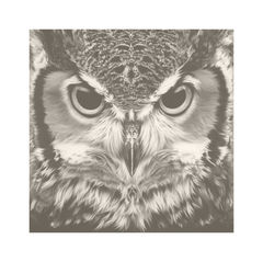 Bubo,Virginianus,-,Great,Horned,Owl,Vintage,Edition,Print,Giclee, Print, Black Rhino, Rhino, Airbrush, Art, Limited Edition,Diceros Bicornis