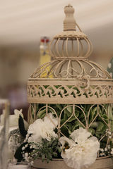 Distressed,Antique,Cream,or,White,Bird,Cages,-,HIRE,ONLY,Bird Cages, birdcages, wedding bird cages, bird cage hire, bird cage centrepiece, bird cage centerpiece