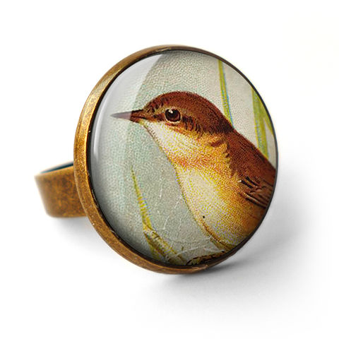 Reed,Warbler,Ring,(TB07),jewellery, jewelry, handmade, brass, ring, vintage, glass, cabochon, steampunk, victorian, bird, reed, warbler