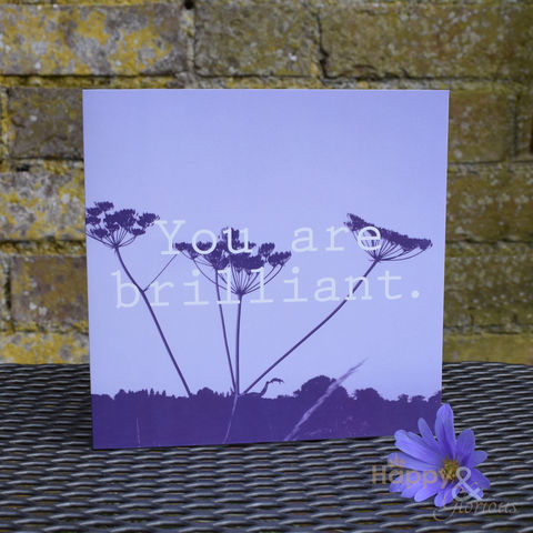 Purple,'you,are,brilliant',greetings,card,by,Kate,Tompsett,purple, mauve, lilac, photograph, recoloured, you are brilliant, designer, card, birthday card, blank card, Britain,