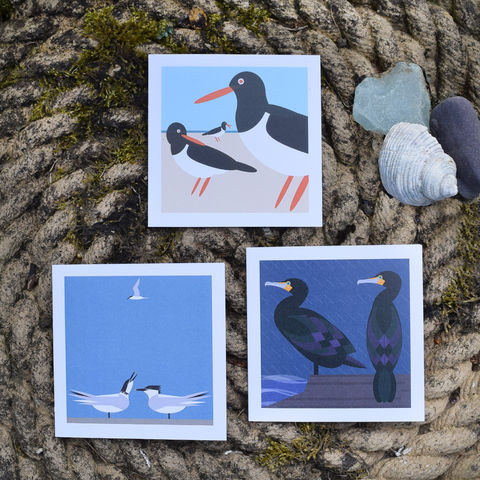 Coastal,note,cards,-,set,of,three,by,I,Like,Birds,birds, i like birds, oystercatcher, cormorant, terns, sea birds, seaside, note card, birthday card, blank card, Britain, made in uk, made in britain