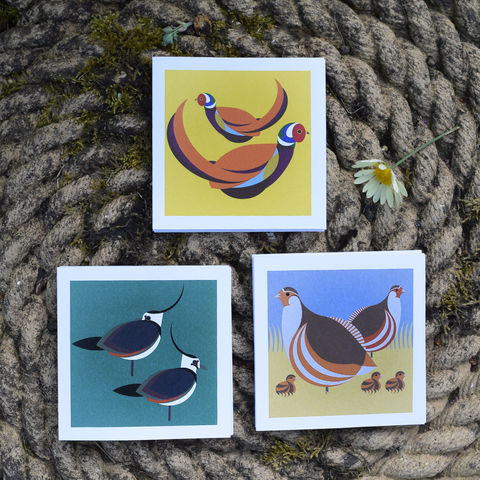 Heath,&,moor,note,cards,-,set,of,three,by,I,Like,Birds,birds, i like birds, oystercatcher, cormorant, terns, sea birds, seaside, note card, birthday card, blank card, Britain, made in uk, made in britain