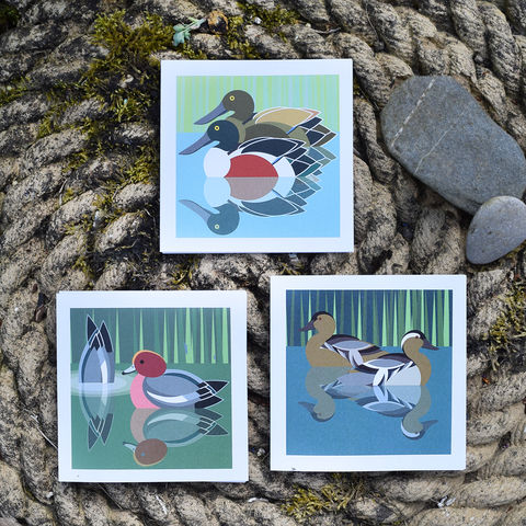 Ducks,note,cards,-,set,of,three,by,I,Like,Birds,birds, i like birds, duck, widgeon, shoveller duck, garganey, water birds, note card, birthday card, blank card, Britain, made in uk, made in britain
