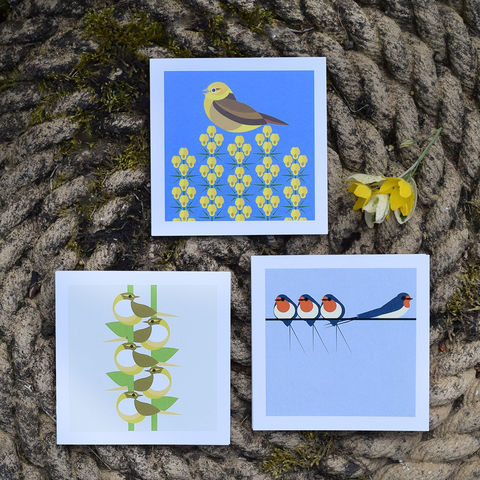 Country,birds,note,cards,-,set,of,three,by,I,Like,Birds, i like birds, swallow, warbler, yellowhammer, country birds, note card, birthday card, blank card, Britain, made in uk, made in britain