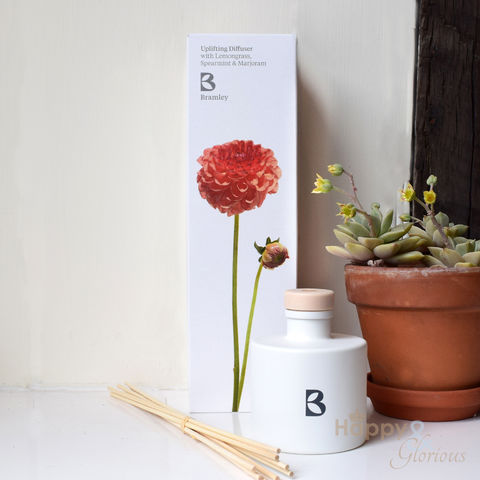 Uplifting,fragrance,diffuser,with,Lemongrass,,Spearmint,&,Marjoram,by,Bramley,Products,Bramley products, handmade, made in Britain, fragrance diffuser, room diffuser, reed diffuser, essential oil, British made gift, made in UK, natural
