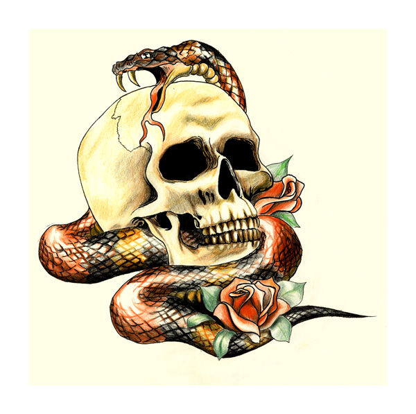 Skull & Snake Tattoo - Limited Edition Print - product images