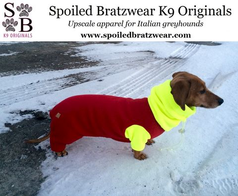 DoxieTogs™,Warm,Dachshund,Body,Suit,,custom,made,with,performance,fleece,eco friendly fleece, italian greyhound Clothing,Dog,spoiled_bratzwear,dachshund_coat,dachshund_sweater,doxie,custom_made,best_fit,malden_mills,italian_greyhound,polar_tec_200,winter,water_resistant,dog_pjs,eco_friendly,Polartec 200 recycled fleece