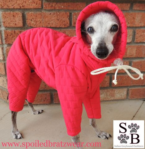 PolarPUFF,™,Winter,Snowsuit,for,Italian,greyhounds,and,small,dogs-3,colors,italian greyhound snow suit, best italian greyhound clothes, iggy gear, italian greyhound outfitters
