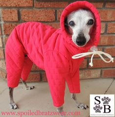 PolarPUFF,™,Winter,Snowsuit,for,Italian,greyhounds,and,small,dogs-4,colors,italian greyhound snow suit, best italian greyhound clothes, iggy gear, italian greyhound outfitters
