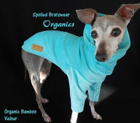 Organic,Bamboo,Velour,Eco,Friendly,Cuddler,for,Dogs-custom,made,Italian,greyhound,dog_hoodie, italian_greyhound_clothes,Dog,organic_dog_clothes,velour_jogger,italian_greyhound,eco_friendly,bamboo,organic_cotton,custom_made,chinese_crested,bamboo_velour,sphynx,natural_fabric,sweatshirt,cowl