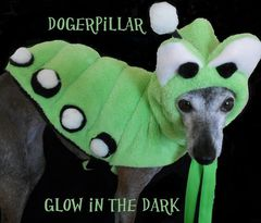 Dogerpillar,Glow,in,the,Dark,Original,Halloween,Costume,for,Dogs,best dog costume,dogerpillar,glow_in_the_dark,italian_greyhound,caterpillar,original,spoiled_bratzwear,costume_contest,dog_costume,chihuahua_costume,yorkie,alice_wonderland,pet_costume,best_costume,micro fleece,fleece,glow poms,pipecleaner,velcro,rib