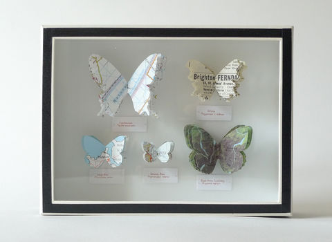 British,Butterflies,map butterfly box British isles