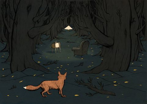 Fox,In,Woods,by,Peter,Beatty,(illustration,print),A3,Illustration, Peter, Beatty, fairy, tale, story, Column, Arts, Agency, Fox, Woods, Trees, Leaves, giclee, paper, Somerset, Velvet, Fine, Art