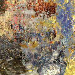 See,Me,for,Who,I,Am,-,24x26,inches,impressionist art, fine art print, landscape art, impressionism, vancouver artist, vancouver art, vancouver trees, art on line, fine art, art work, art fine art, fine art artists, arts sales