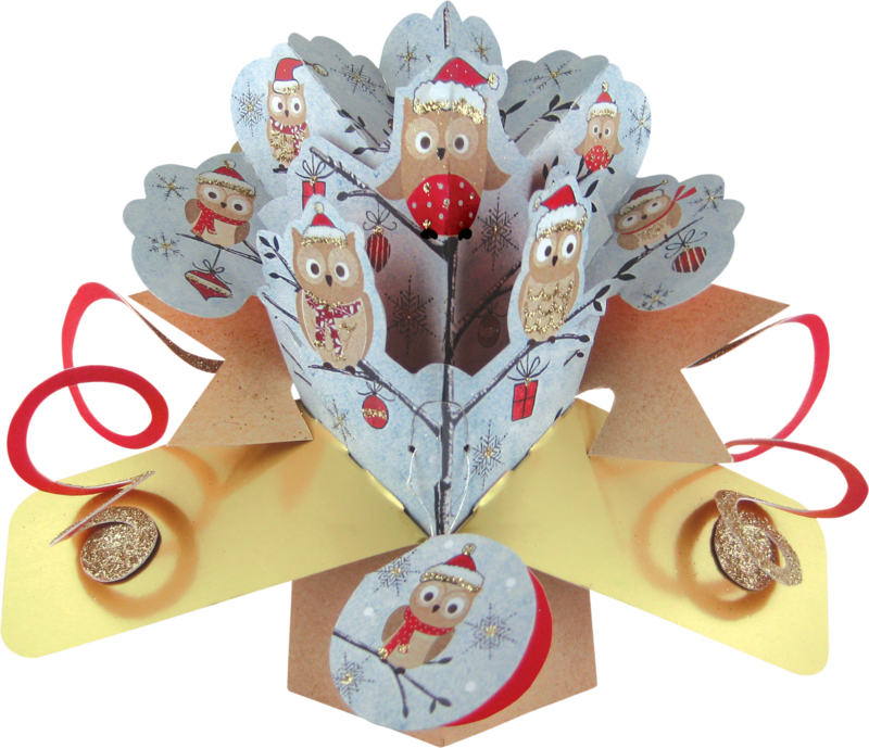 Second Nature Xmas Pop Ups - Owls - product images