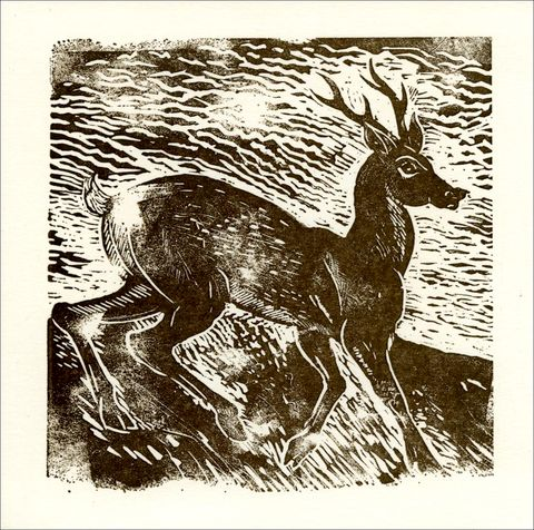 The,Roe,Deer,Cards,-,Letterpress,Pack,Edwyn Collins, Deer Linoprint, Edwyn Collins artwork