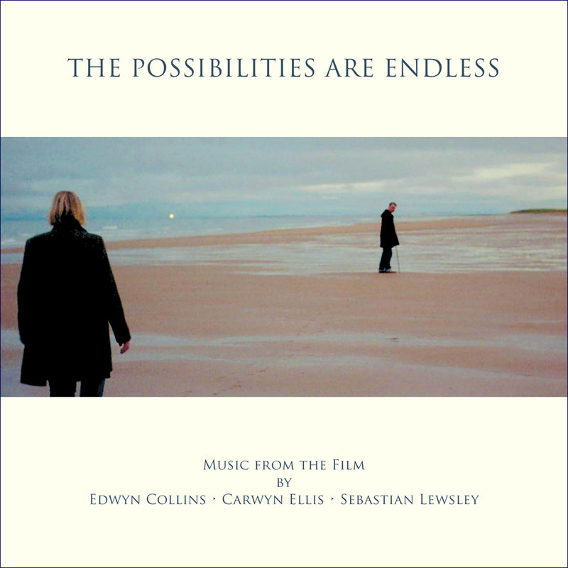 The Possibilities Are Endless LP: Soundtrack by Edwyn Collins, Carwyn Ellis and Sebastian Lewsley (vinyl comes with free CD version) - product image
