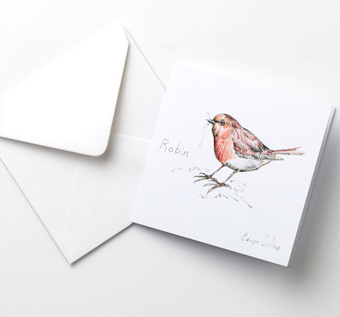 The,Robin,Cards,Pack,Robin Cards, Edwyn Collins, Bird Illustrations
