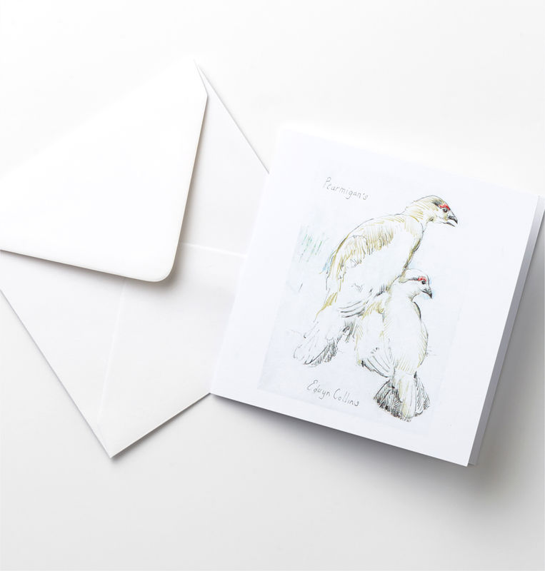 Ptarmigan Cards Pack - product image