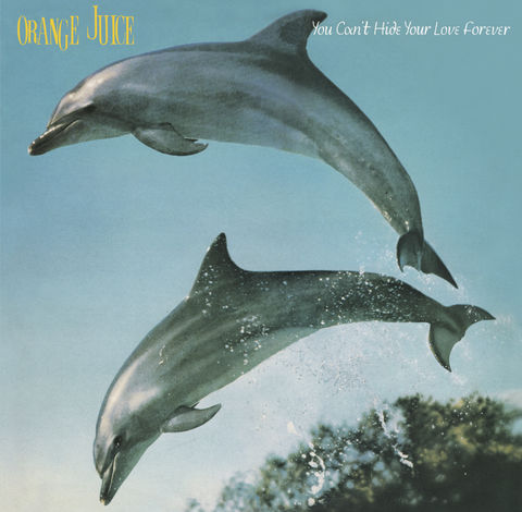 Orange,Juice:,You,Can't,Hide,Your,Love,Forever,LP,(vinyl),Orange Juice, You Can't Hide Your Love Forever