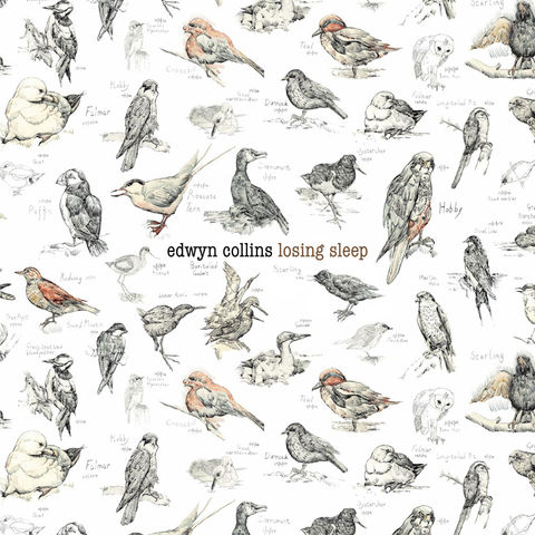 EDWYN,COLLINS:,LOSING,SLEEP,LP,Losing Sleep, Edwyn Collins, solo albums