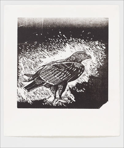 Golden,Eagle,Letterpress,Print,from,Edwyn,Collins,Linocut,Golden Eagle Print