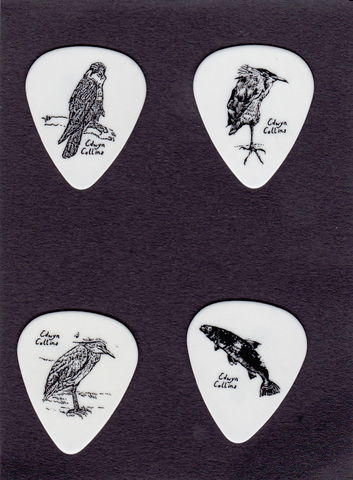 Wildlife,Guitar,Plectrums,Picks, plectrums, Edwyn Collins, art, birds